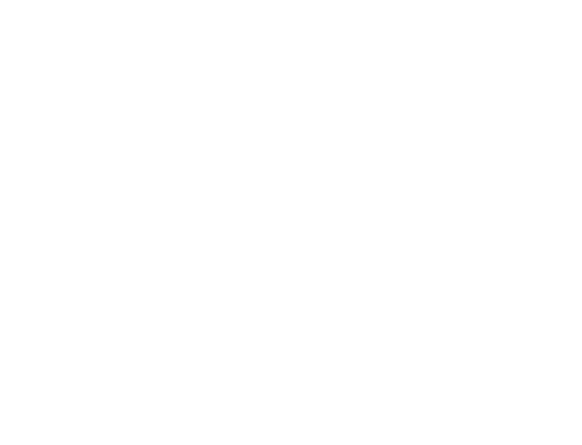 sge-icon-white.png