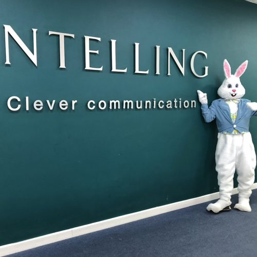 intelling-rabbit-mascot.jpg