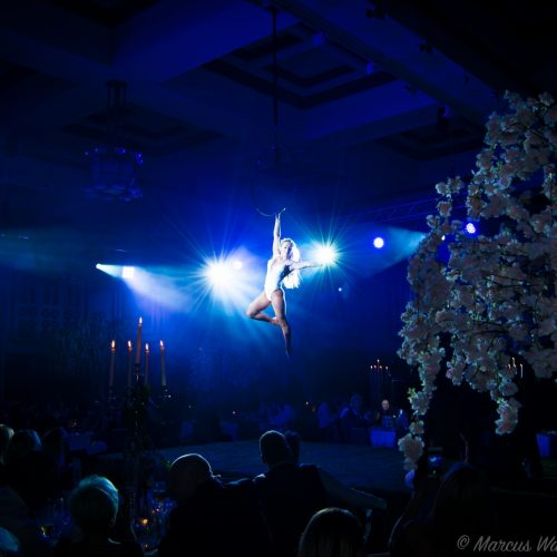 secret-garden-girl-acrobat.jpg